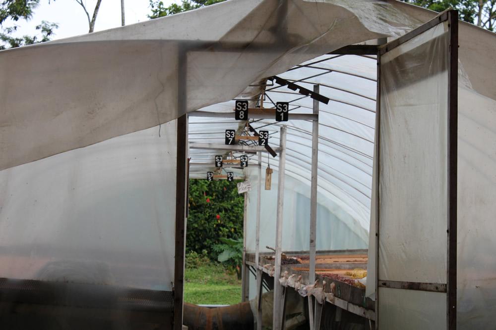 secador solar 12